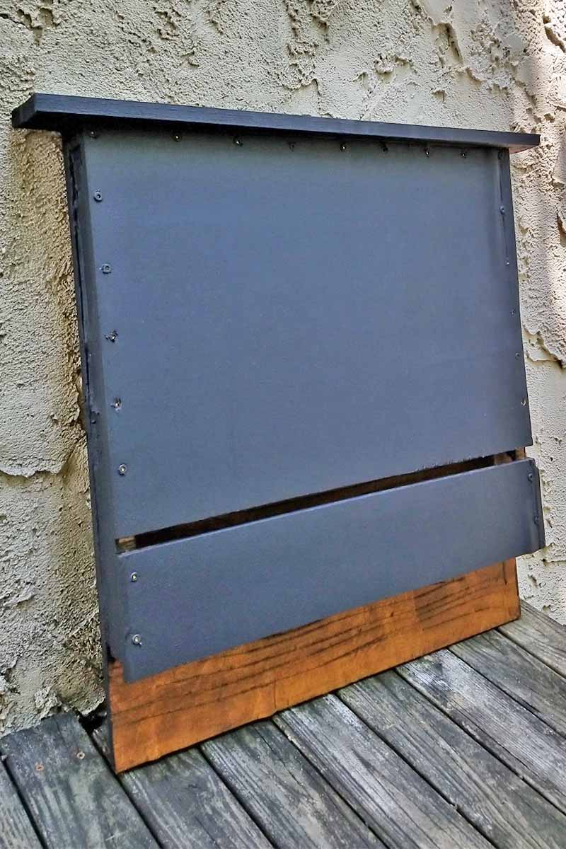 How To Build A Bat Box With Diy Instructions Gardener S Path