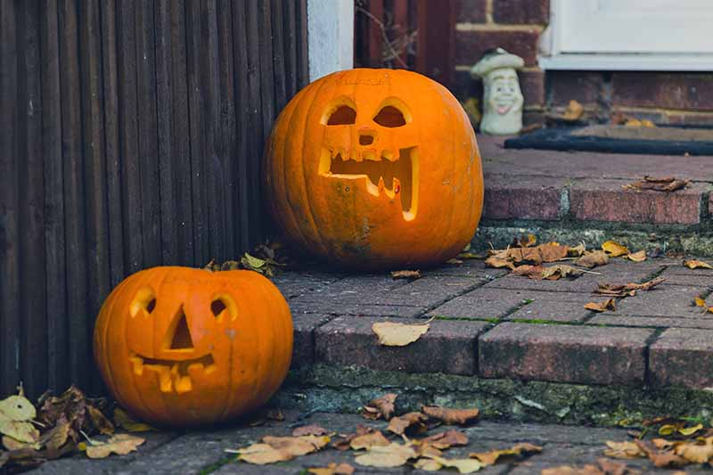 Two jack-o'-lanterns on the brick front steps of a house, with scattered dry fall leaves.