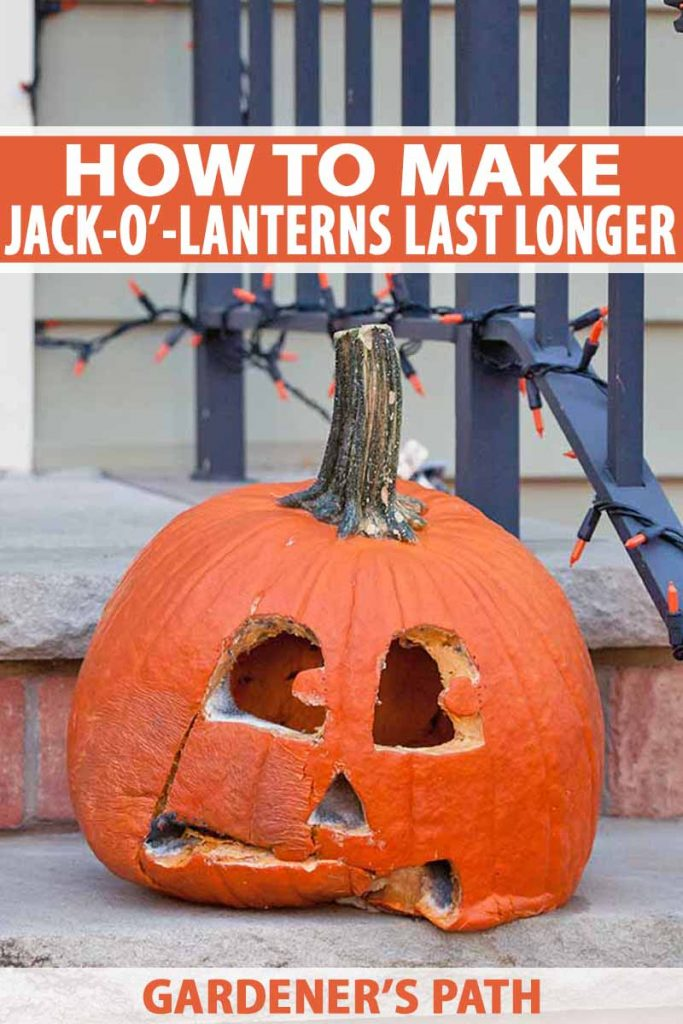 A rotting jack-o'-lantern on the brick front steps of a house with gray siding and a black metal railing decorated with orange lights, printed with orange and white text.
