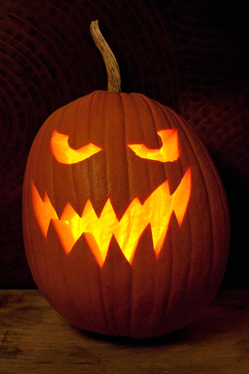 A carving pumpkin with glowing yellow eyes and mouth, against a black background.