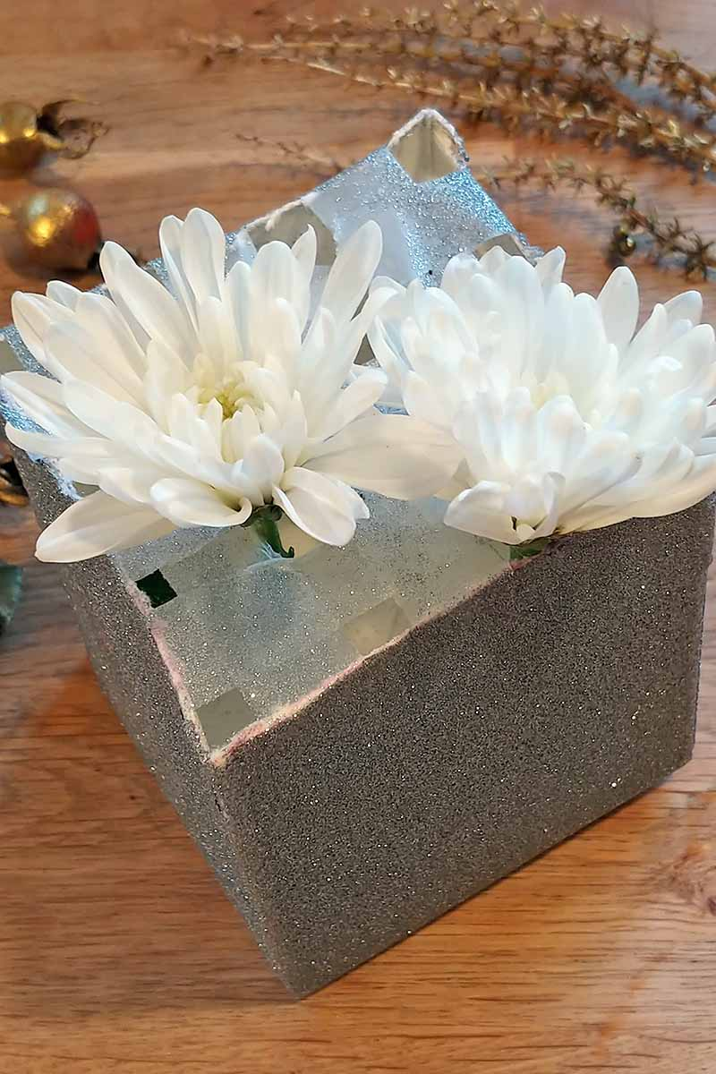 Two white mums with stems placed into the holes in a grid of Scotch tape on the top of a silver cardboard container, on a brown wood surface, with foliage from the garden that has been sprayed with metallic paint at the top of the frame.