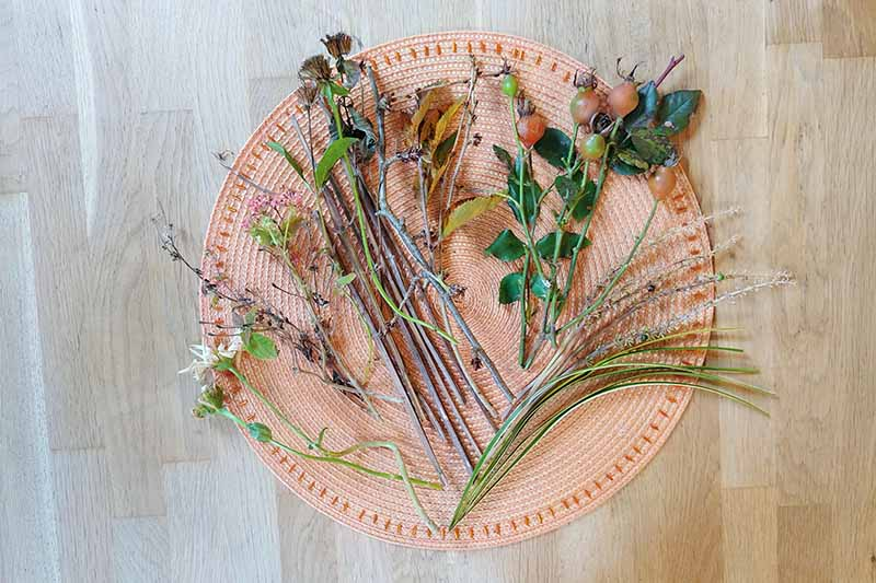 Overhead shot of a collection of various types of garden greenery including ornamental grass, rose hips, twigs, and more, cut to size and arranged on a round melon-colored place mat on top of a wood surface.