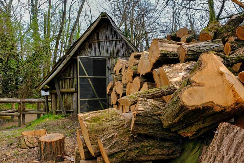 A pile of wood is stacked in front of rustic wooden barn.