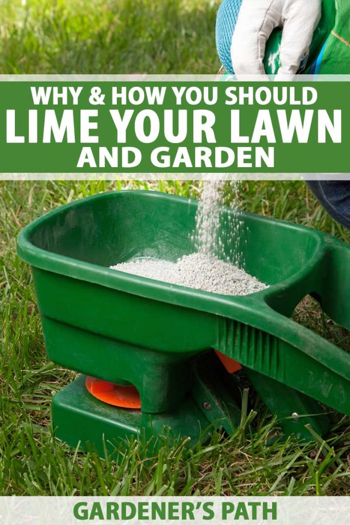 Lime pellets being added into a push spreader on a grassy lawn.