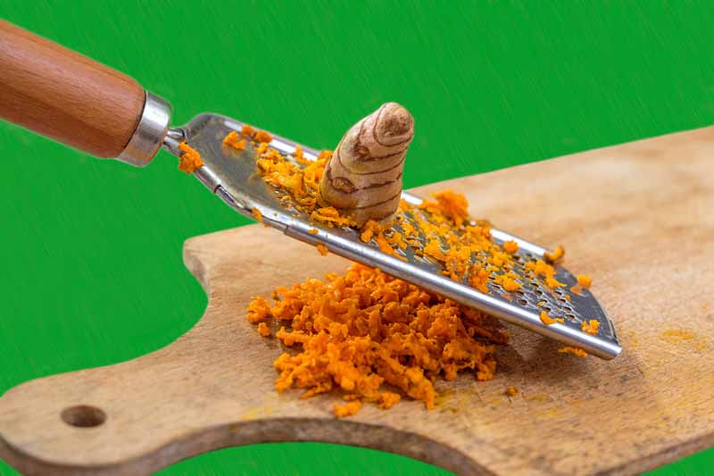 A fresh turmeric root being grated with a microplane.
