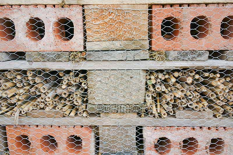 Closeup horizontal image of a bug hotel made with hollow twigs, cement blocks, slate or stone sheets, and cored clay blocks with hollowed areas, held secure with chicken wire.