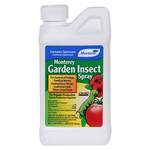 A jug of Monterey Garden Insect Spray - Concentrate on a white isolated background.