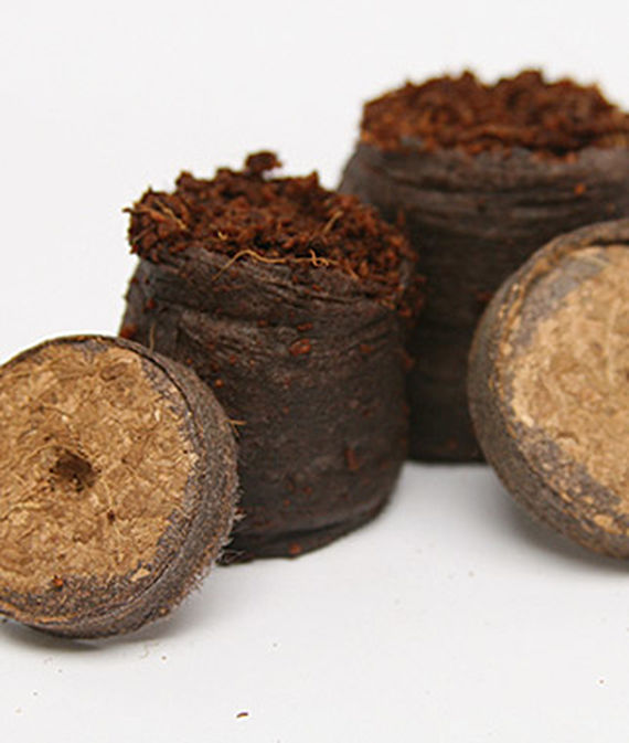 Netted Coir Pellets from Burpee on a white, isolated background.