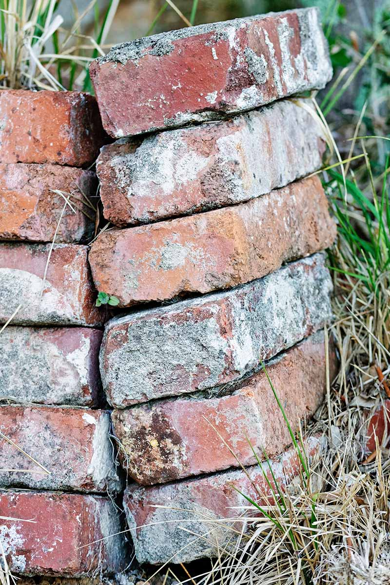 Vertical image of two stacks of builder's bricks, aged and showing some wear, with unkempt grass.