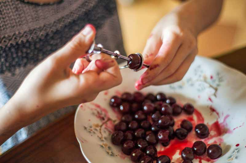 Female hands uses a tool to remove seeds from cherry fruit.