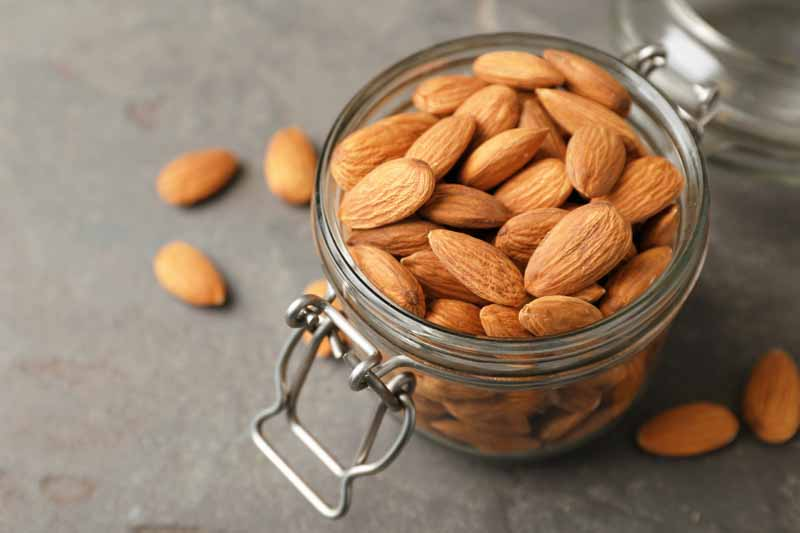 Almonds in a glass jar for storage.