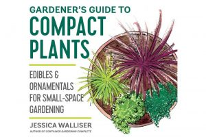 Scaling it Down with Jessica Walliser's Gardener's Guide to Compact Plants