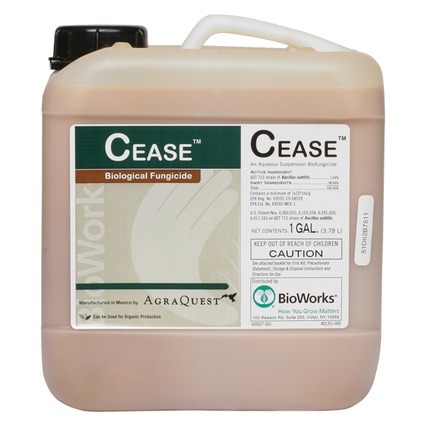 A container of CEASE Bacillus subtilis strain QST 713.