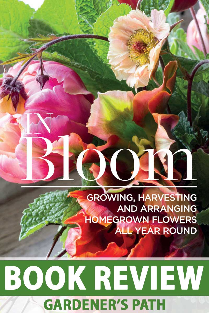 "The book cover for ""In Bloom."""