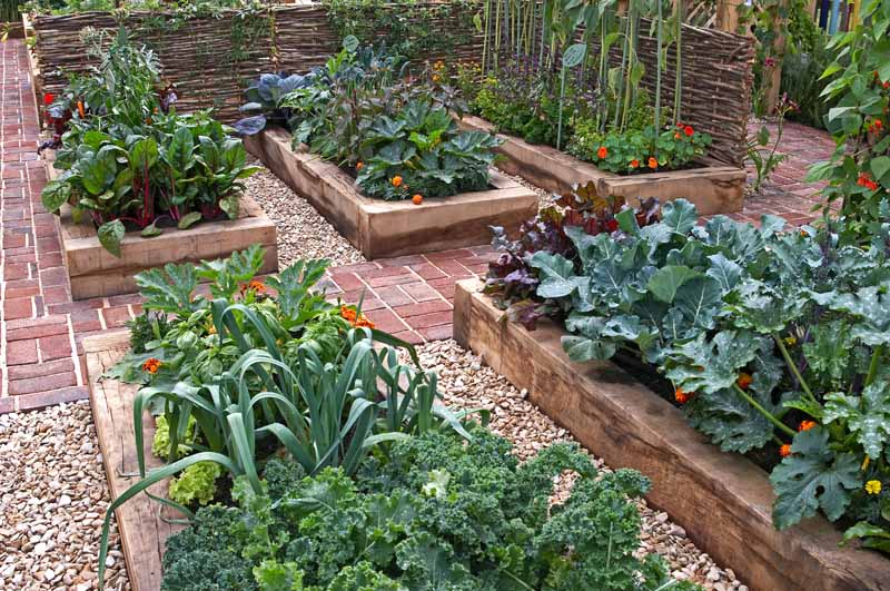 Six raised vegetable beds help with extending the vegetable growing season into the fall.