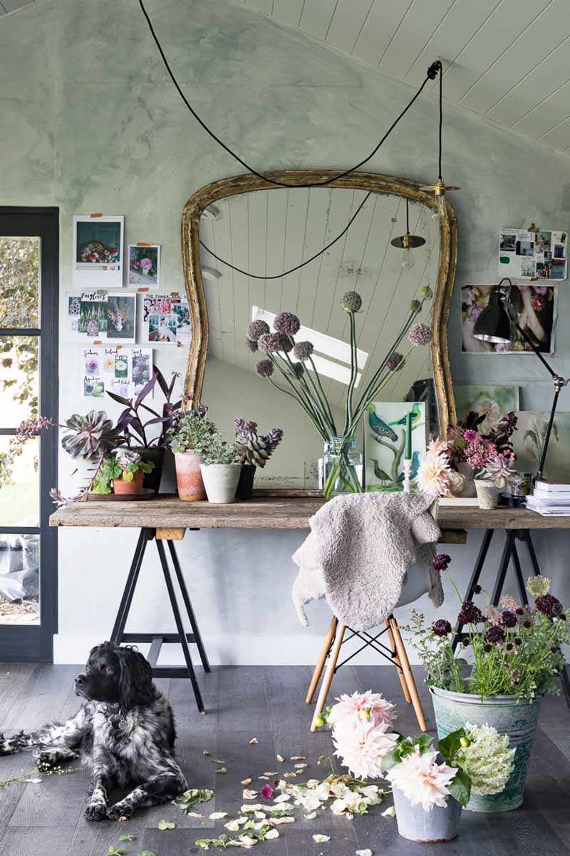 Vertical image of a desk with a large mirror, with potted flowers and cut plants in vases, with a chair in teh foreground and a wall in the background with a doorway to the left, and photos and images taped to the wall, with ablack and white dog on the floor in the foreground beside plant pots and buckets.