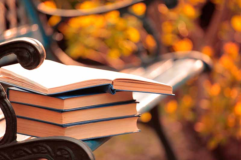 A close up of a pile of hardback books, with navy blue covers, the top one is open, on a park bench, in fall. The background is the bench in soft focus autumn colors.