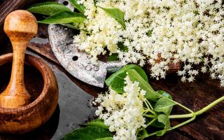 Harvested elderflowers in a wooden bowl and a wooden mortar and pestle.
