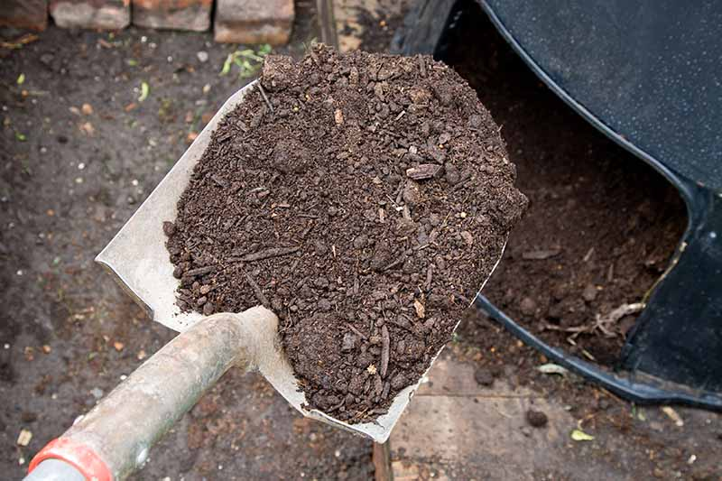 A close up of a spade, digging compost out of a black plastic compost bin. In the background is soil.