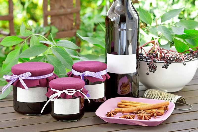 A wooden outdoor table, with leaves in the background. Three jars of jam next to a bottle of home made wine, with an enamel bowl overflowing with elderberries. In the foreground is a spice grater and a pink plate of cinnamon and star anise.