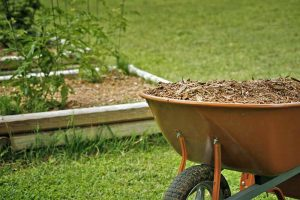 Mulching and Low Maintenance Gardening