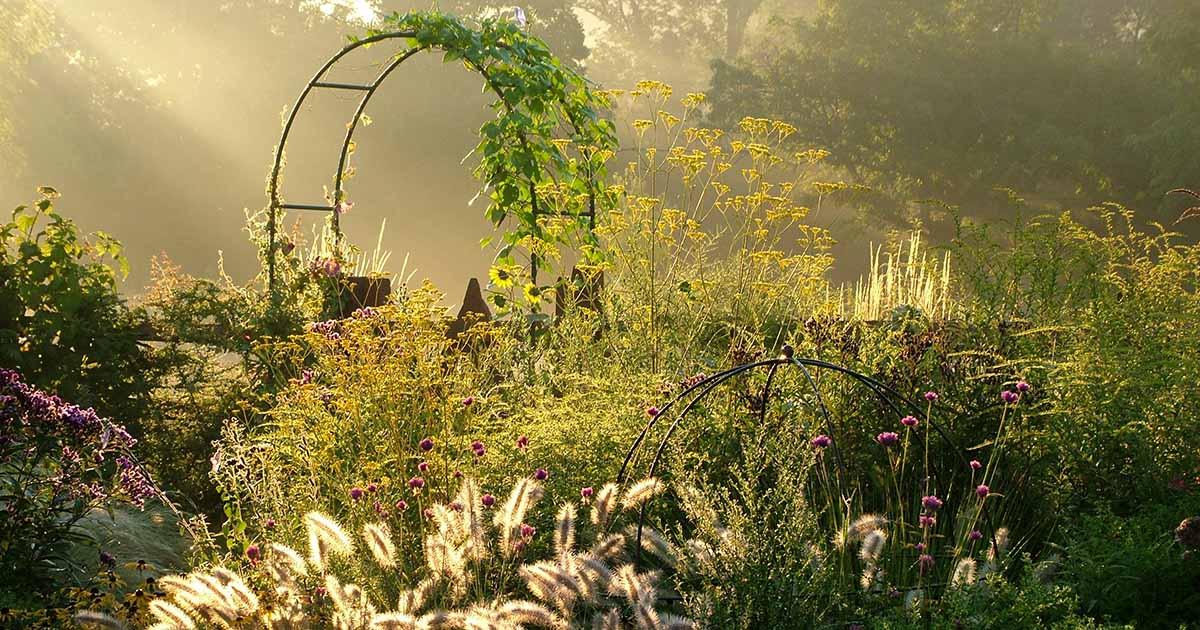 Fall Garden Planting Design Guide Gardener S Path