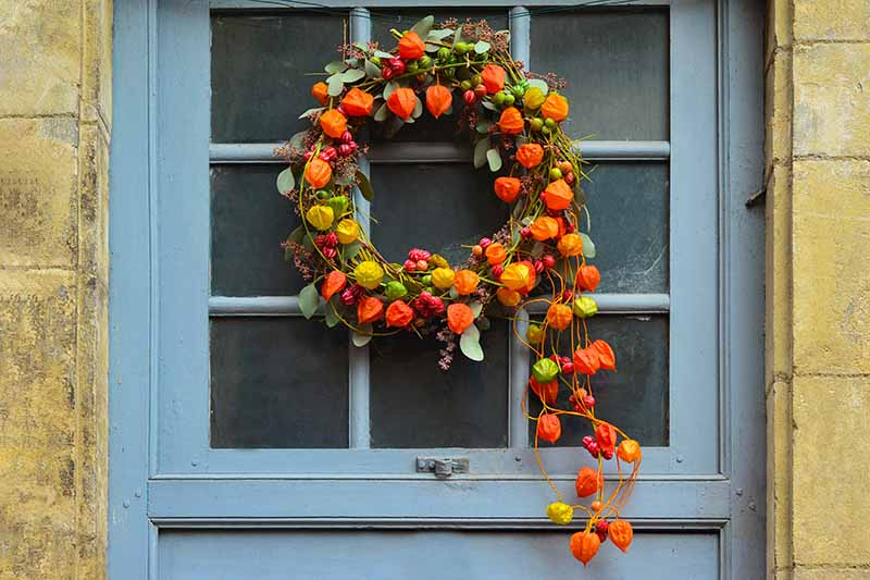 Close up of a light blue wooden window in a stone house with a bright autumn colored wreath made from ornamental gourds in red, yellow, and orange. Cascading vines in brown and green complete the autumnal scene.