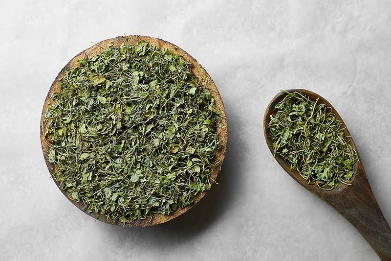 A close up of a wooden bowl and wooden spoon both containing dried methi leaves ready for cooking. The background is a textured, white surface.