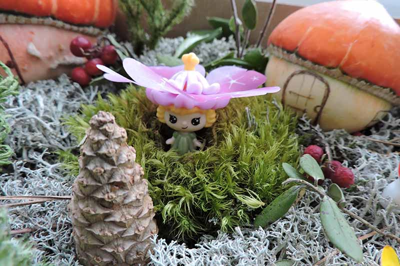 A small fairy figurine with a pink hat, yellow hair and a little smile surrounded by green wispy leaves. In the background are two small fairy houses fashioned from gourds. In the foreground is a pine cone.