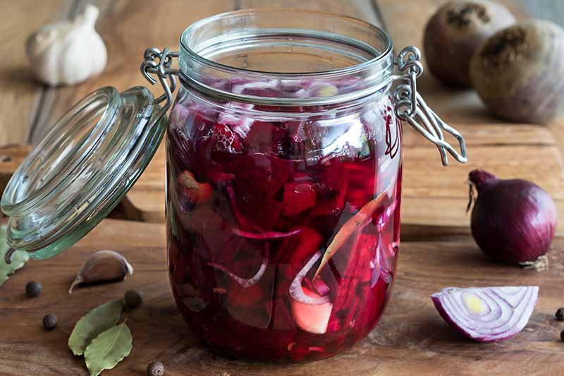 A close up of a mason jar containing chopped beets in liquid. The background is a wooden surface with a garlic bulb, garlic clove, onions, and more of the same root vegetable.