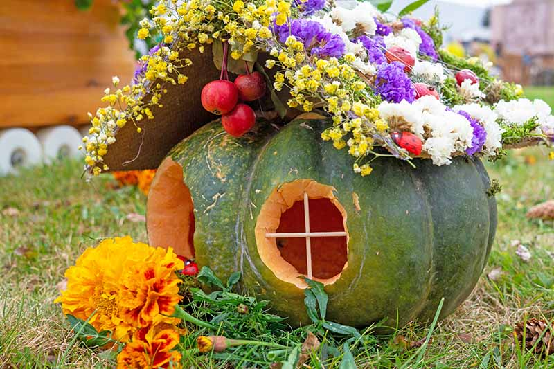 A green pumpkin, with two holes carved out of it to create windows, a roof laden with flowers in various colors to create a fairy house. The background is green lawn and in the foreground bright orange and red cut flowers.