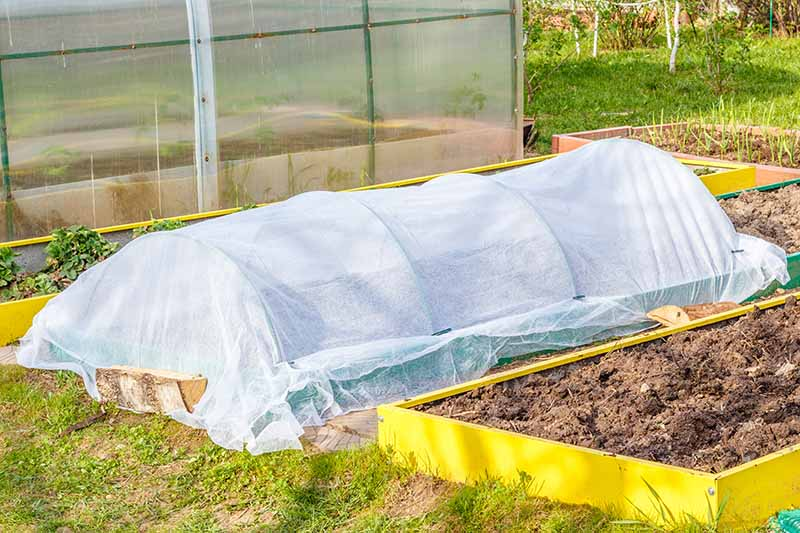 Two yellow raised beds, one with a floating row cover over it. Hoops support a white fabric draped over the bed. In the background is a greenhouse, another raised bed, and grass and foliage in bright sunlight.