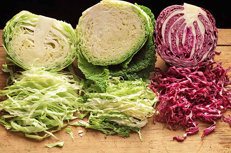 Three cabbages, on their side, cut in half, with the other half sliced finely. To the left of the frame is a green variety, in the center a savoy, and to the right is a purple variety. The background is a wooden surface with bright light.