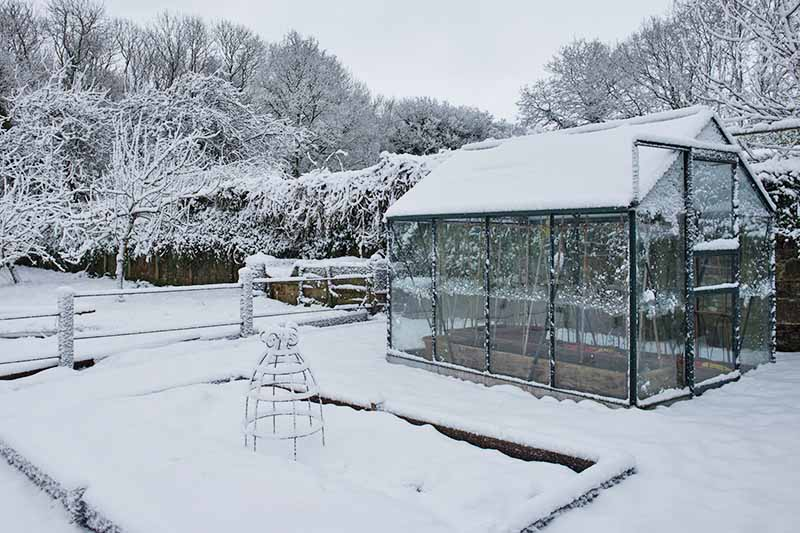 A winter scene in the garden. Snow covers the roof of a greenhouse, a raised garden bed and the ground surrounding. The background is trees and a fence all white with snowfall.