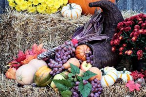 Spice Up Your Garden with Fall Decor: Decorating Ideas for Autumn