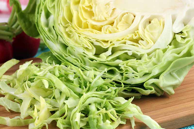 A close up of half of a green cabbage, with slices of the vegetable in front of it, on a wooden chopping board. The background is in soft focus.