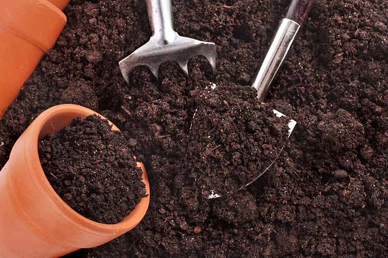 A close up of rich dark soil with a small terra cotta pot to the left of the frame and a garden fork and trowel in the center.