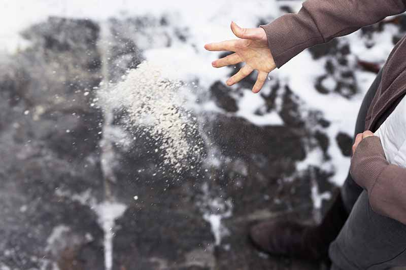 A hand from the right of the frame spreading grit on a snowy pathway. The background is snow and concrete in soft focus.