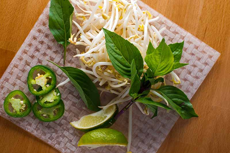 A close up top down picture of herbs with lime segments, cut chilis, and mung bean sprouts set on a square plate on a wooden surface.