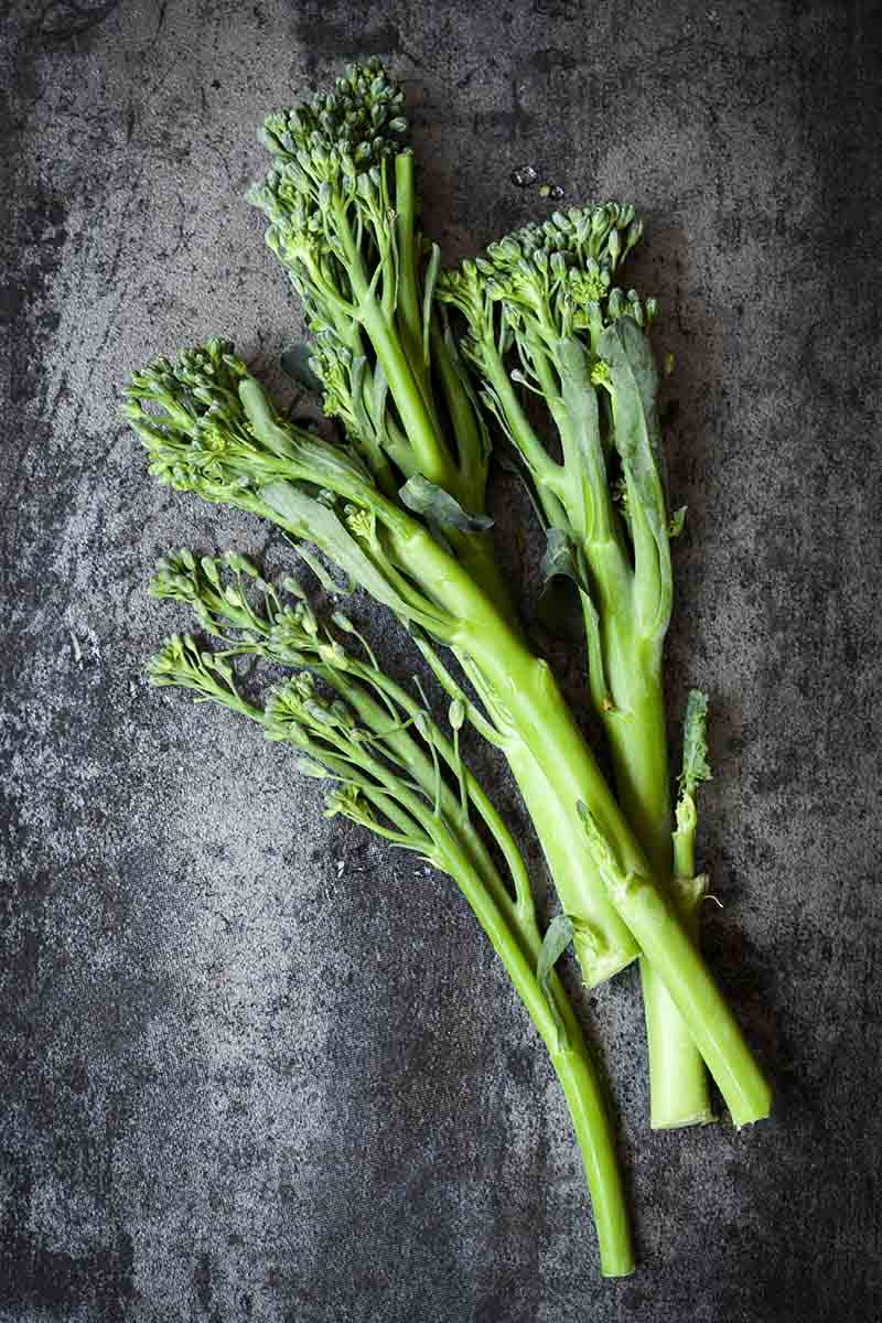 A vertical close up picture of stems of fresh broccolini pictured on a gray textured background.