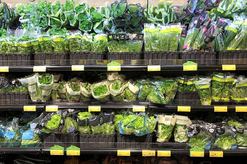 A supermarket shelf stocked with various different herbs in plastic packets arranged in dark brown wicker baskets with prices below them.