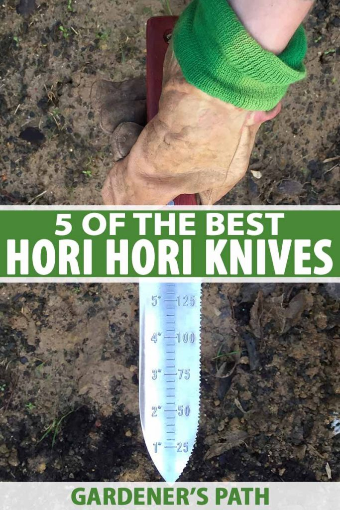 A vertical close up picture of a hand wearing a leather gardening glove holding a Japanese hori hori garden knife. The blade has depth measurements in both inches and millimeters. The background is dark soil. To the center and bottom of the frame is green and white text.