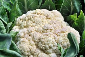 Why Is My Cauliflower Fuzzy? Troubleshooting Tips for Ricing in Curds