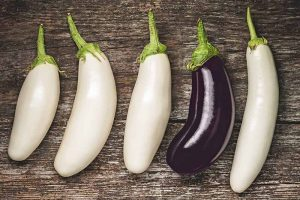 9 of the Best White Eggplant Varieties