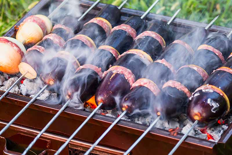 A close up of metal skewers cooking kebabs on an open charcoal grill with grass in soft focus in the background.