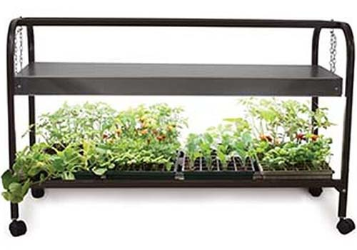 A close up of an indoor gardening cart in black metal, with casters, showing a lower shelf containing seedlings, and a lighting canopy above them on a white background.
