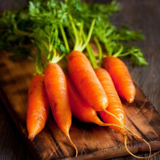 A close up of 'Little Finger' carrots freshly harvested and cleaned, with foliage still attached, set on a wooden surface with the background fading to soft focus.