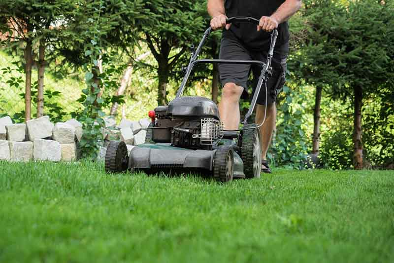 A close up of a man's legs wearing shorts while he mows the lawn with a petrol mower, with trees in the background.