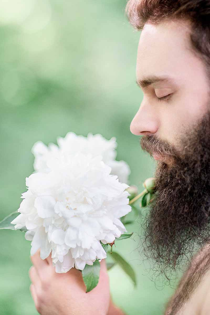 A close up of a man with a beard holding a white flower up to his face with his eyes closed, on a soft focus green background.