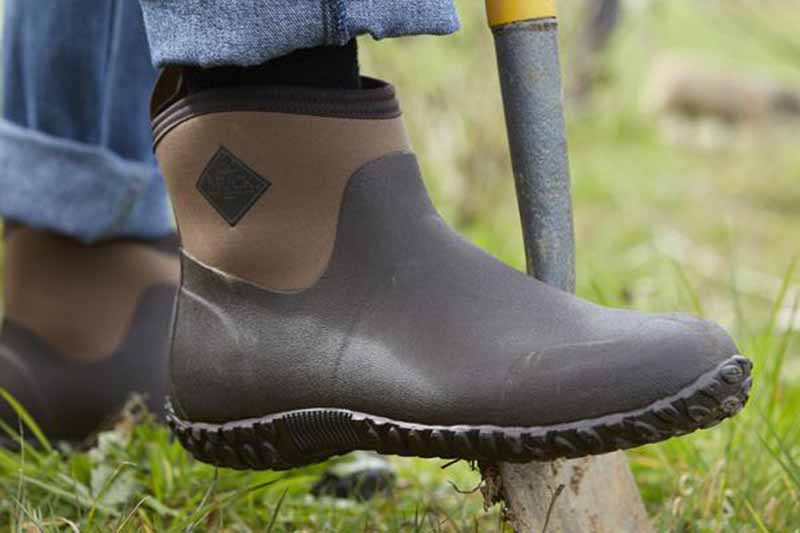 A close up of a brown rubber gardening shoe with dark brown sole pushing a spade into the ground, with grass in soft focus in the background.